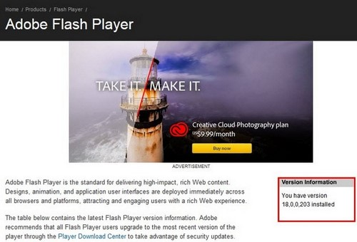 flash player version test