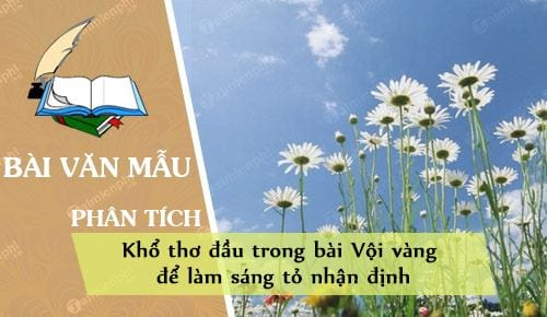 phan tich kho tho dau trong bai voi vang de lam sang to nhan dinh