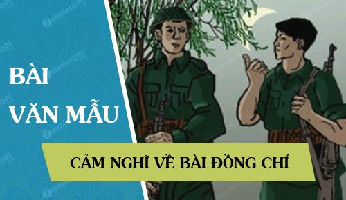 cam nghi ve bai dong chi