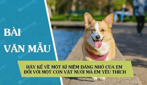 Bài mẫu số 1: Hãy kể về một kỉ niệm đáng nhớ của em đối với một con vật nuôi  mà em yêu thích