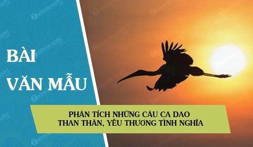 phan tich nhung cau ca dao than than yeu thuong tinh nghia