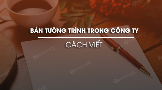 cach viet ban tuong trinh trong cong ty