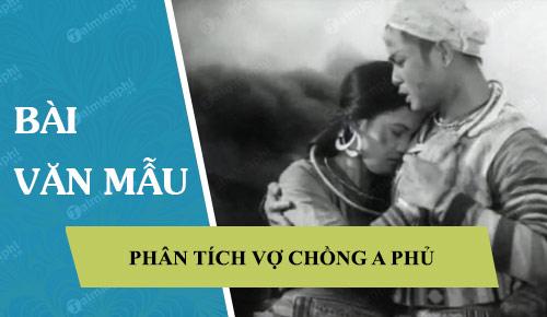 phan tich vo chong a phu cua to hoai 41577