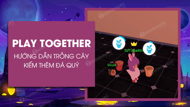 cach trong cay trong play together kiem da quy