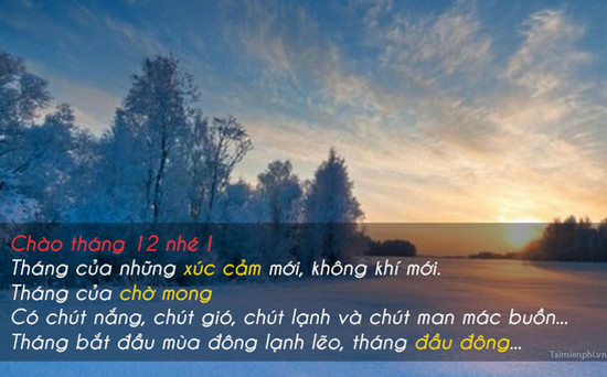 hinh anh chao thang 12 lam stt